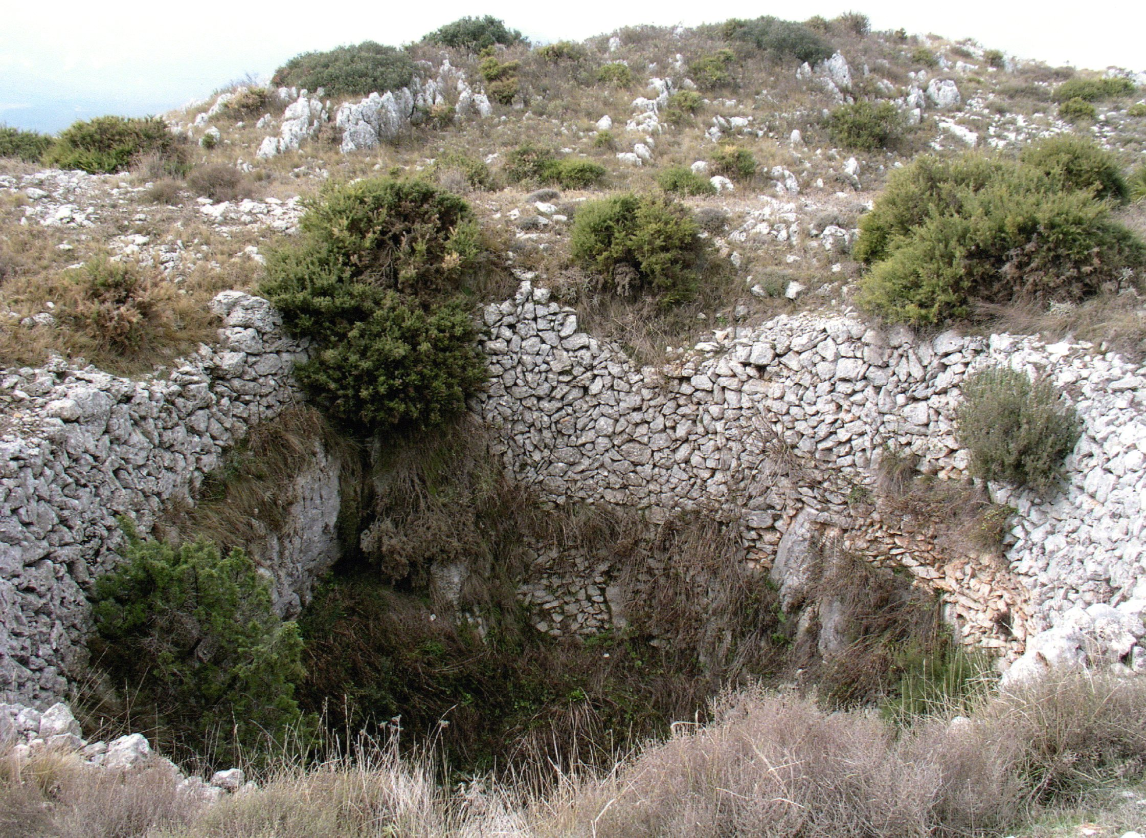 entorno laguar007